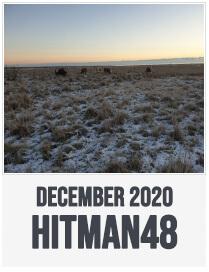 Hitman48